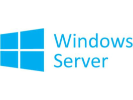 Microsoft Windows Server Standard 2019 64Bit English 1pk DSP OEI DVD 16 Core (P73-07788)